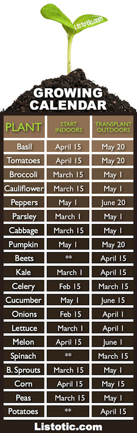 Growing and Planting Calendar