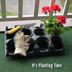 Planting Time